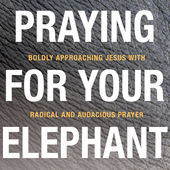 Praying for Your Elephant — 21-Day Prayer Podcast